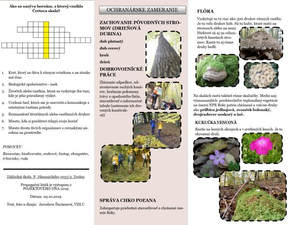Prezeráte obrázky k článku: Prales nemusí byť exotický. Projektový deň VIII. C